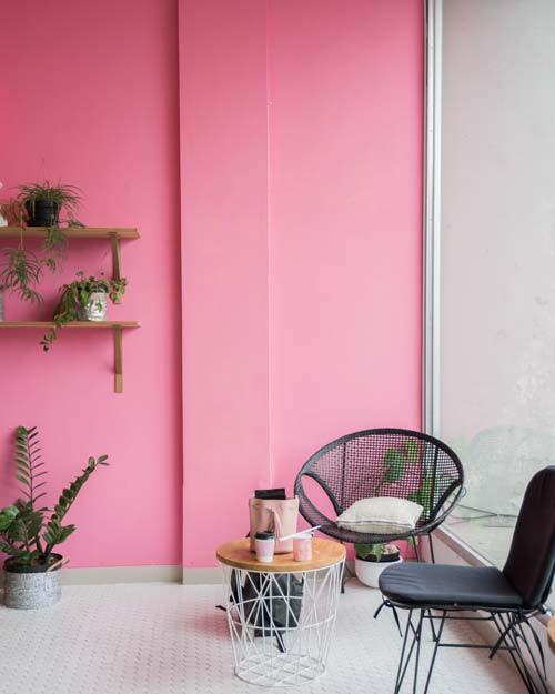 rosa fondvägg