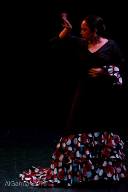 July 11 Flamenco1.docx