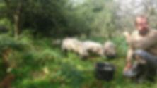 gilles et les moutons.jpg