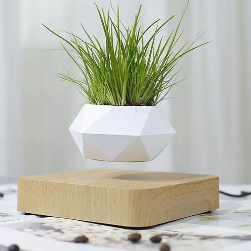 Vaso per pianta futuristico anti gravitazionale
