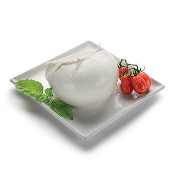 Mozzarella Fior di latte 10x100gr