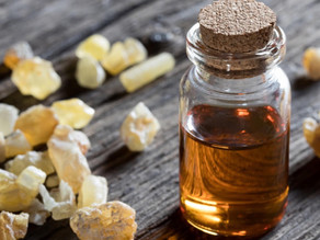 Frankincense The King of Essentail Oils