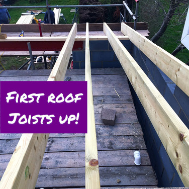 First roof joists