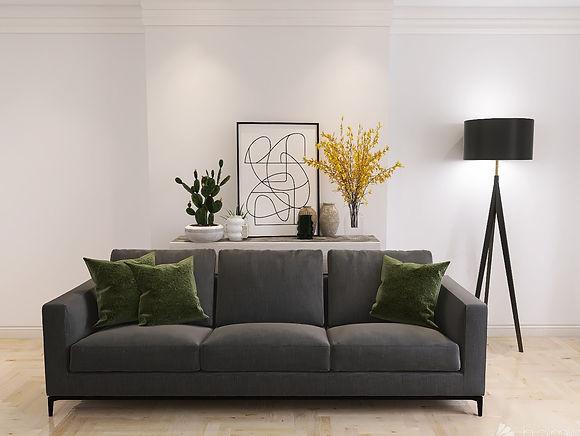sofa 1.jpeg