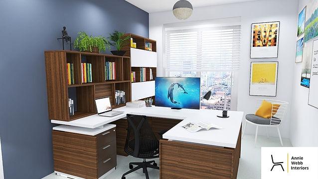 Andreas Bristol WFH office.jpeg