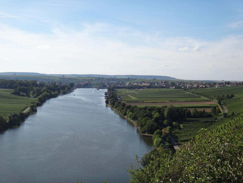 Weingut Hirschmüller - der Neckar