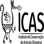 logo_icas_youtube.jpg