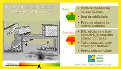 cerca_sem_muro