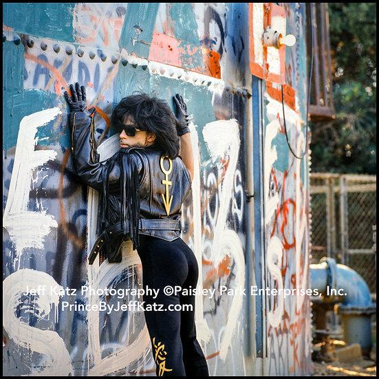 PRINCE 1990   -   Image 220.  Los Angeles, CA