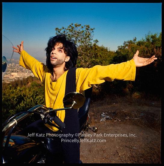 PRINCE 1990  -  Image 228,  Los Angeles, CA
