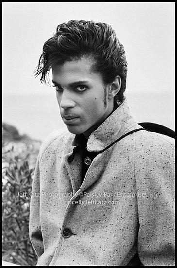 PRINCE 1985  -  Image 084.  Nice,France