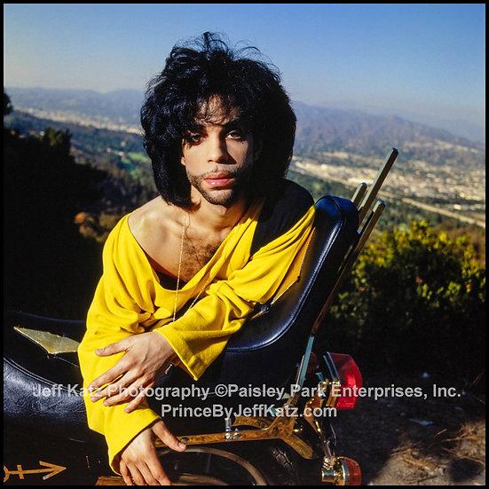 PRINCE 1990   -   Image 231.  Los Angeles, CA