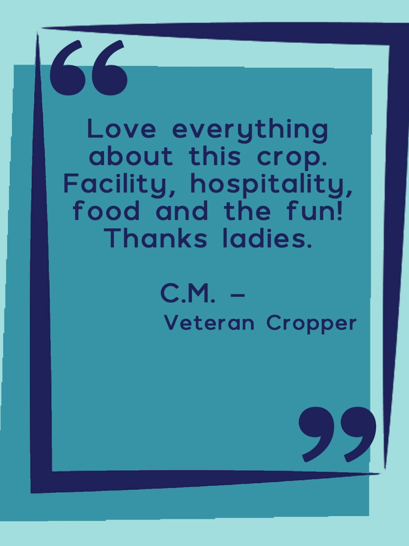 Cropper Quote