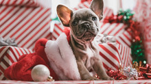 Four Ways to Improve Your Holiday Experience At Home