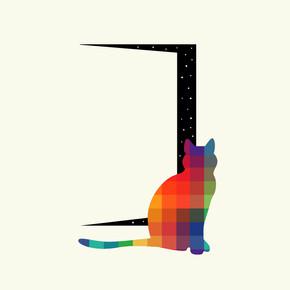 kedi-1.jpg