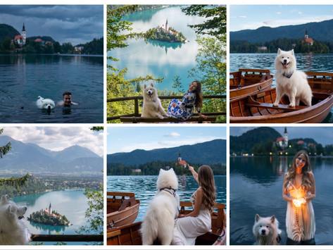 🇸🇮Slovenia- Lake Bled | Slowenien- Bleder See