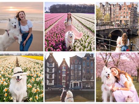 🇳🇱 The most beautiful places in the Netherlands   Die schönsten Orte in den Niederlanden
