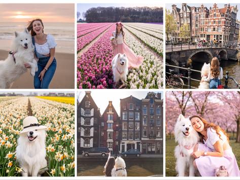 🇳🇱 The most beautiful places in the Netherlands | Die schönsten Orte in den Niederlanden