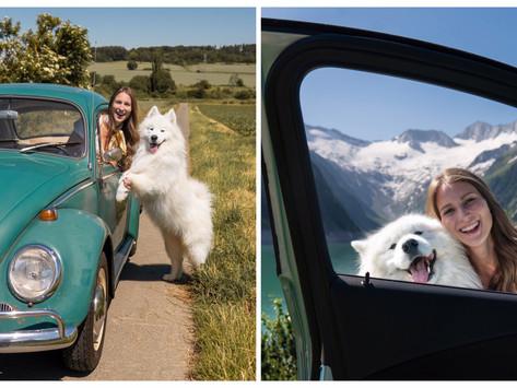 🐶Traveling with a dog | Reisen mit Hund