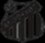 Associação dos Pesquisadores e Historiadores do Santos FC