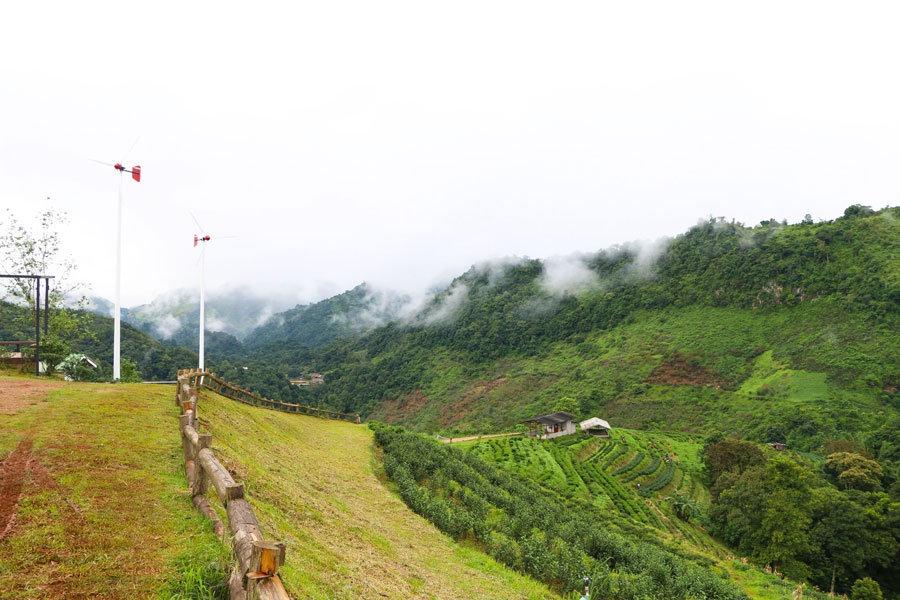 One Day Tour to Doi Ang Khang