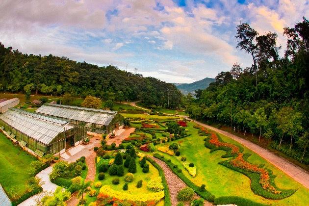 Tour to the Botanic Garden