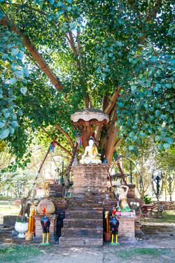 @King Naresuan Stupa at Muang Ngai