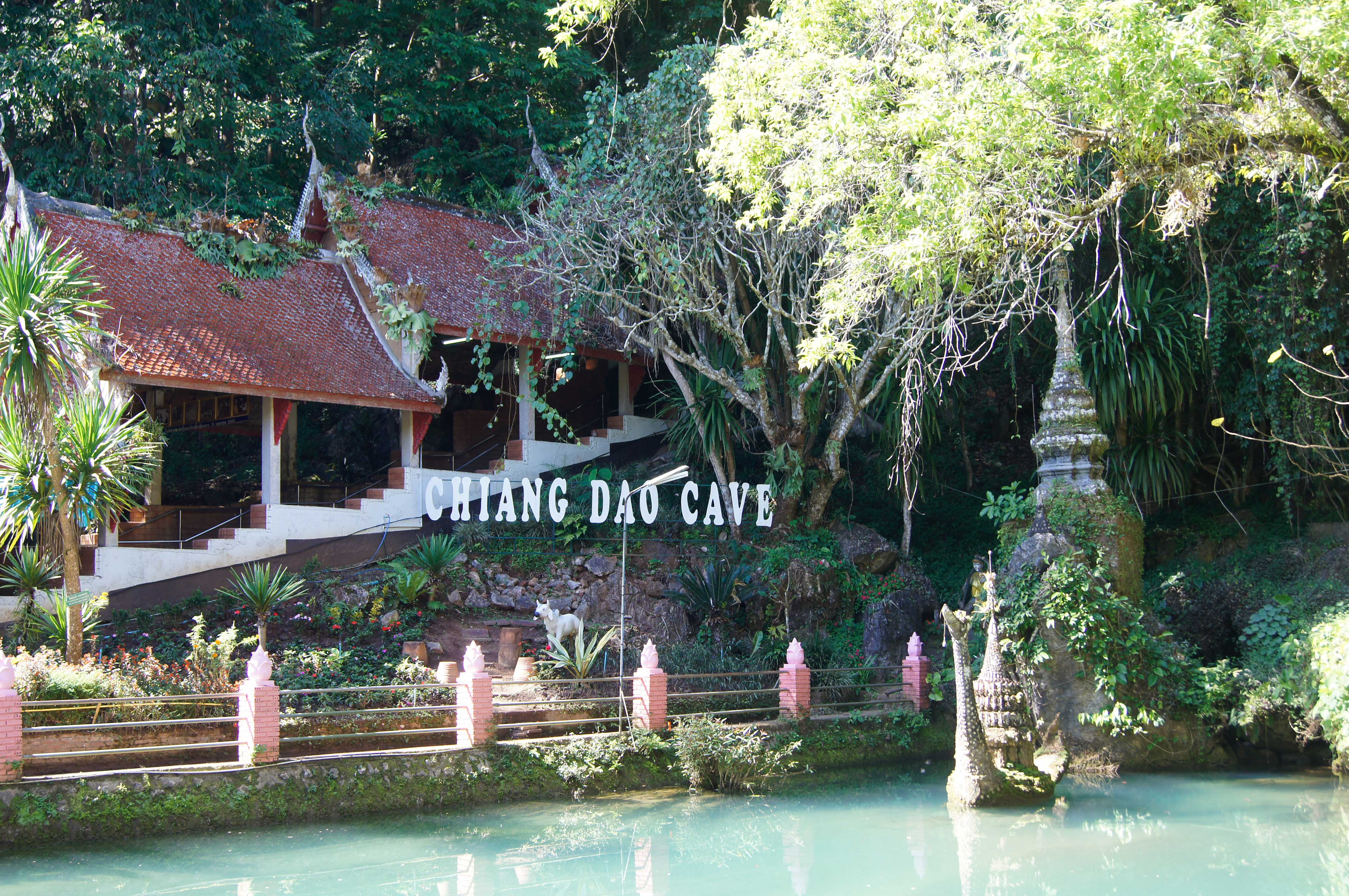 Discover Chiang Dao Cave & Wat