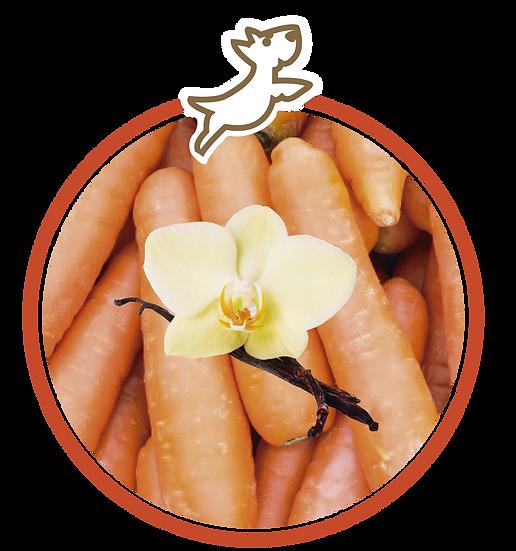 Helado de zanahoria con vainilla (Chico)