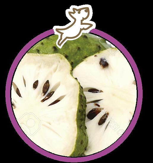 Helado de guanábana (Grande)