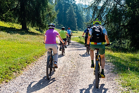 mountain-bike-4370184_1920.jpg