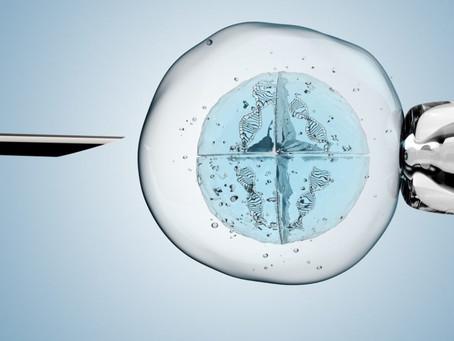 FIV: teste genético pré-implantacional não invasivo e mais preciso