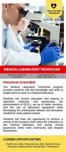 Copy of RESIZED COURSE BROCHURE (3).png