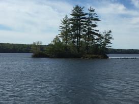 The Island in Bass Cove