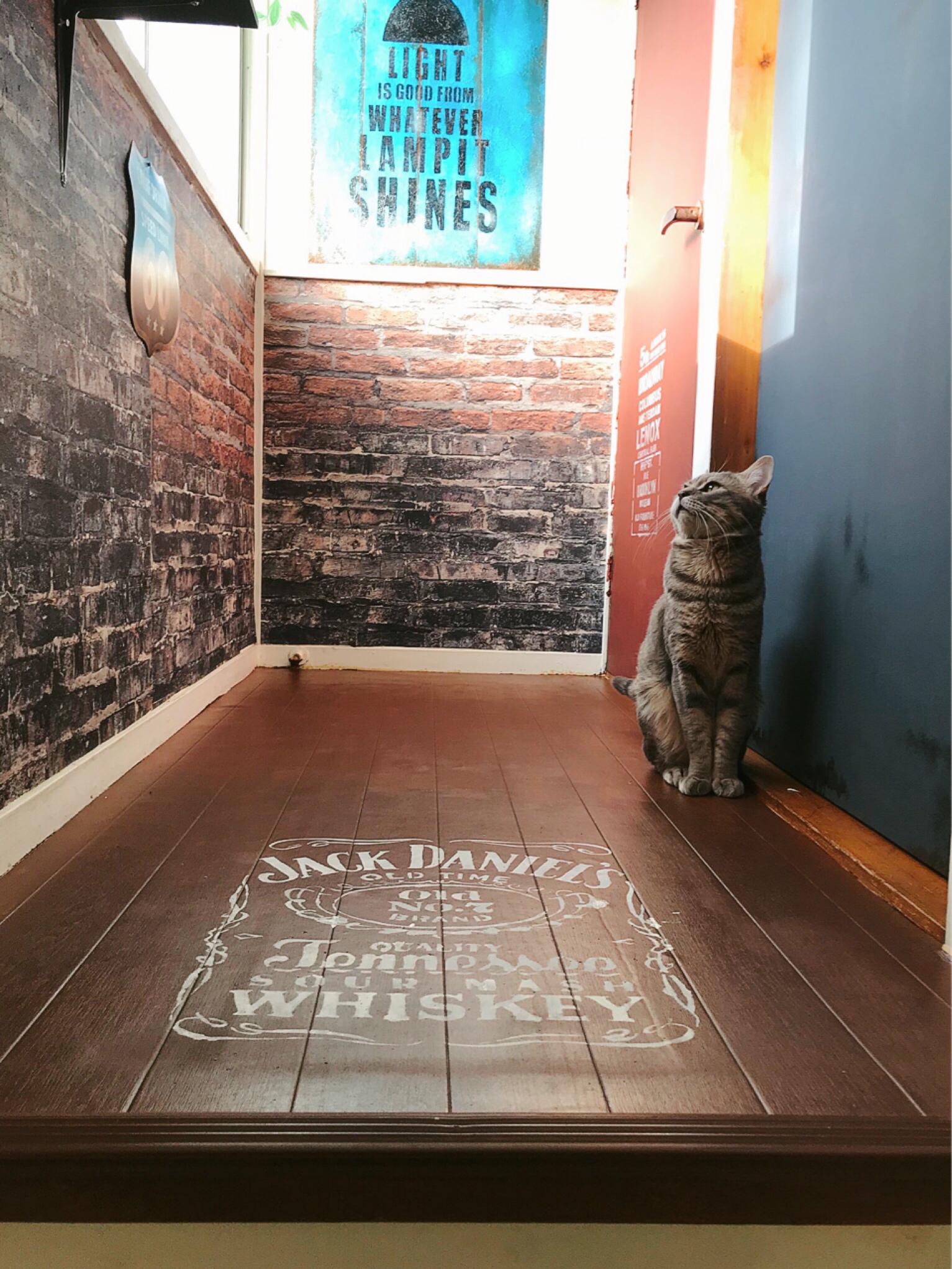 床にステンシル