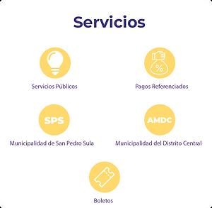 servicios-panel.png