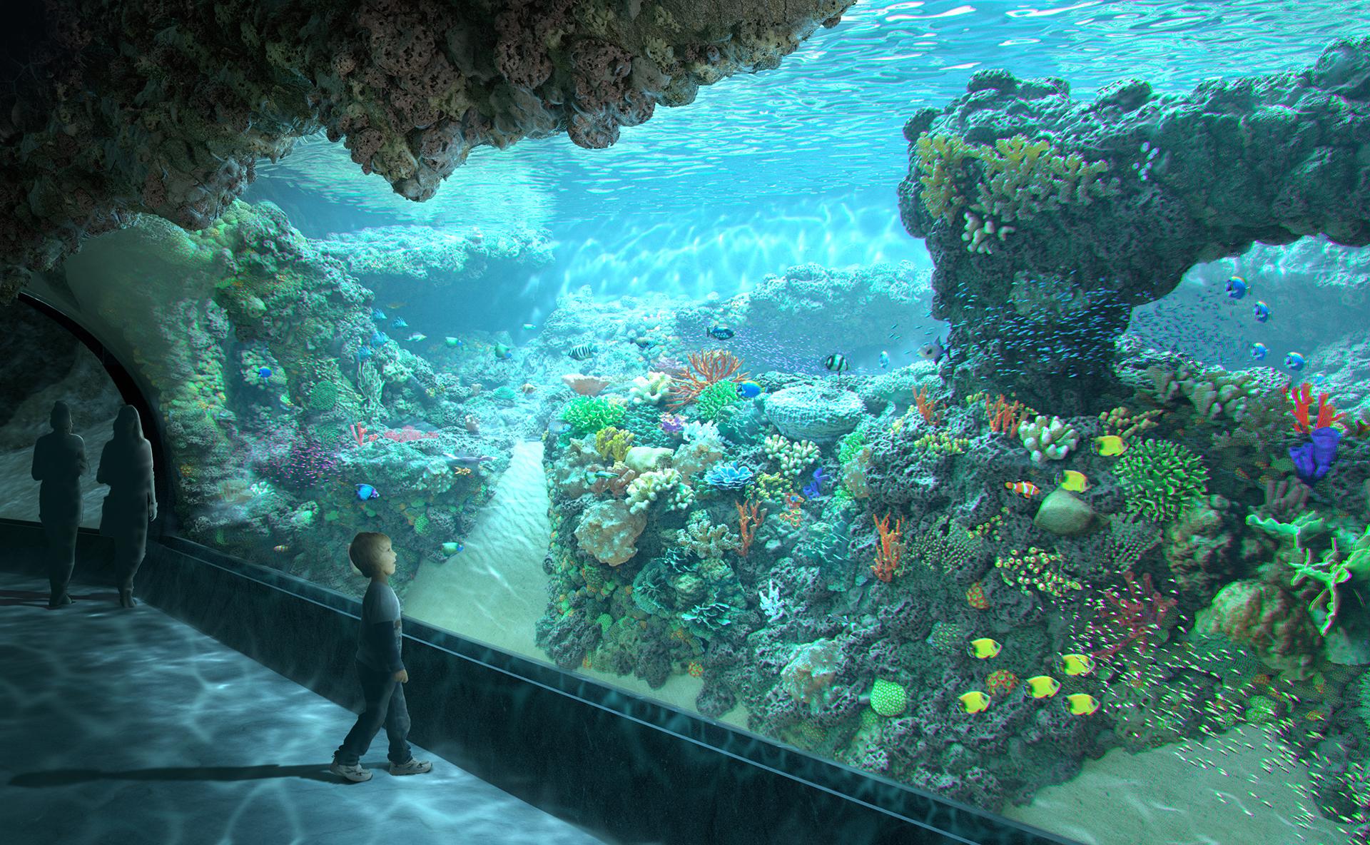 Orientarium - wizualizacja rafy koralowej