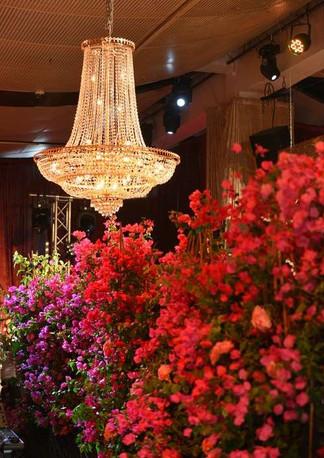 Camellia-0019.jpg