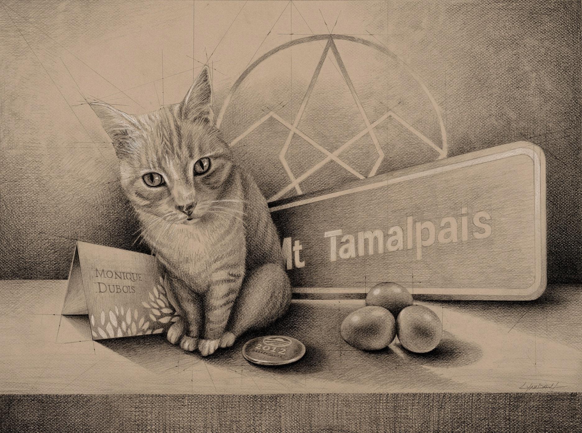 Quadrinity Cat