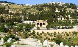 Mount of Olives - Israel