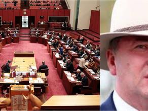 Barnaby Joyce Calls for Senate to Represent All Australians
