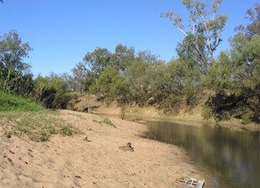 Where did all the water go? New report reveals 2 trillion litres missing from Murray-Darling