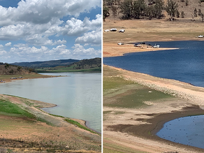 'Beggars belief': Council fears state government learns nothing from current drought