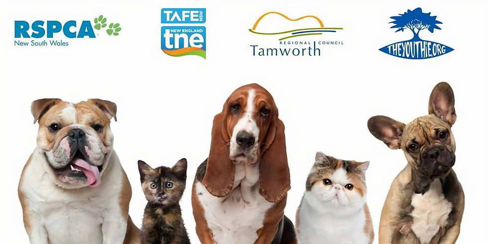 Annual Free Microchipping and Vaccination Day for Cats and Dogs