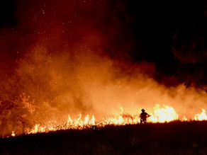 Forensic Examination Required as Investigations into the Cause of the Hanging Rock Fire Continue
