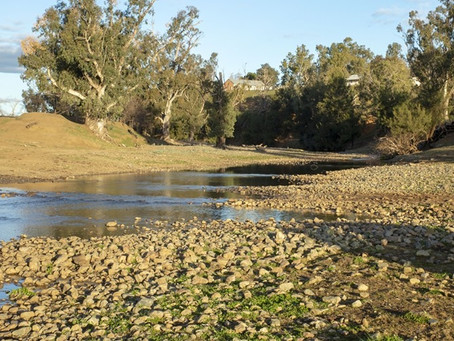 CWA NSW drought relief fund closing soon