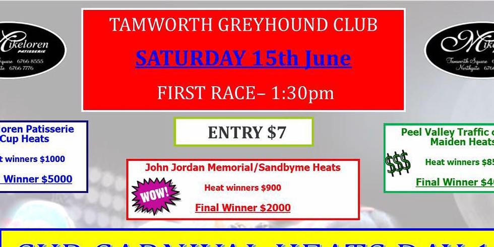 Tamworth Greyhound Club Cup Carnival Heats