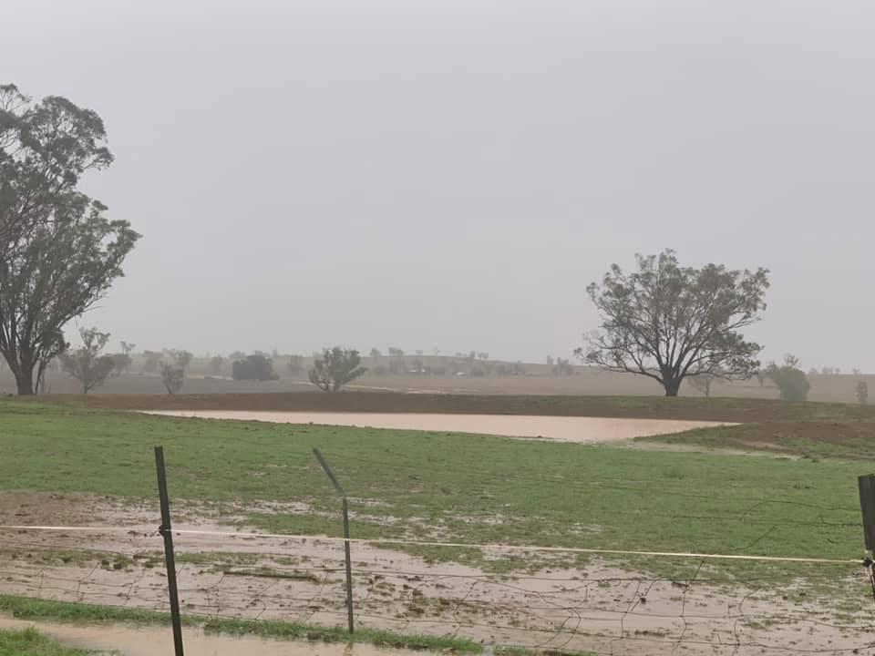 Sharmonee Shaw's dam was empty, then it overflowed