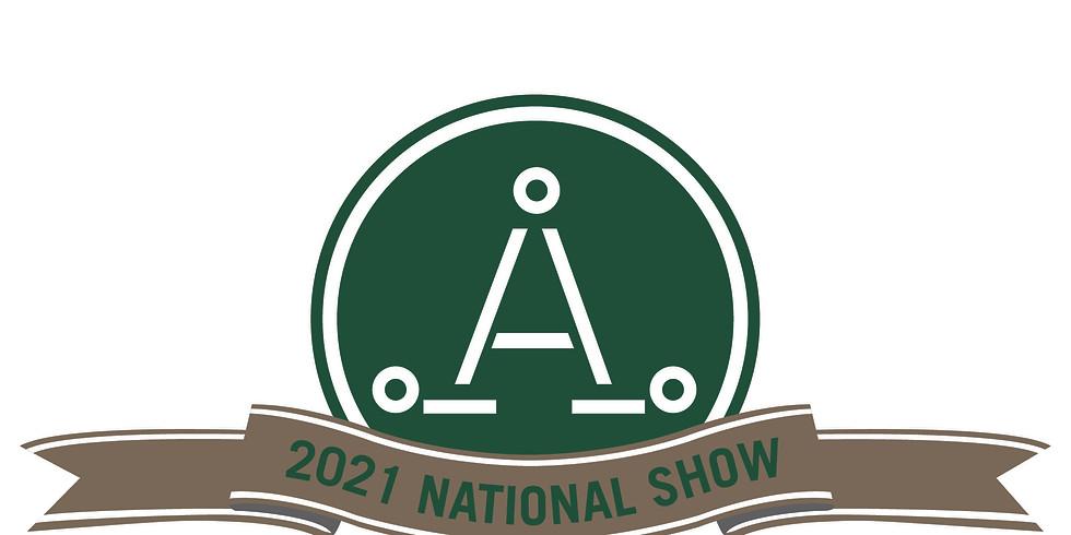Australian Stock Horse Society 50th Anniversary National Show
