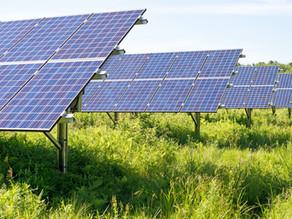 Tamworth's 8-Million Dollar Solar Farm gets Green Light
